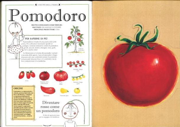 I frutti della terra_pomodoro