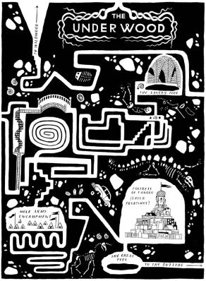 llustrazione di Carson Ellis, tratta dal sito http://www.wildwoodchronicles.com/. Tutti i diritti riservati