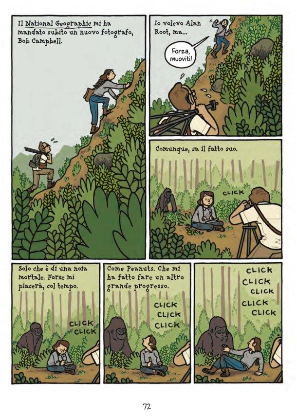 Primati_interno