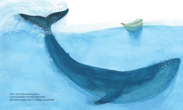 La balenottera azzurra 1