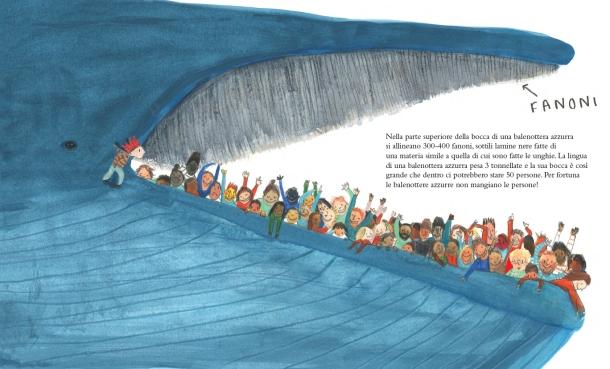 La balenottera azzurra 2